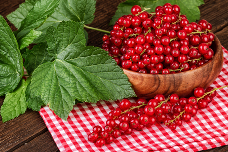 red currant: Ripe red currant berries on red checkered napkin