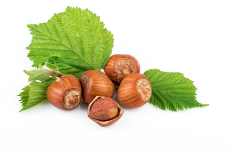 filbert nut: Hazelnut or filbert nuts with leaves on white background Stock Photo
