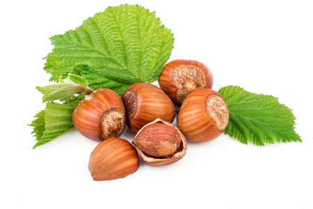 filbert: Hazelnut or filbert nuts with leaves on white background Stock Photo