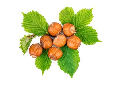 filbert: Hazelnut or filbert nuts with leaves on white. Flat lay, top view.