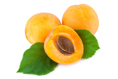 Fresh apricots with leaves isolated on white. Stock Photo
