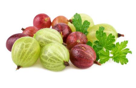 gooseberry: grosella espinosa verde rojo sobre blanco Foto de archivo