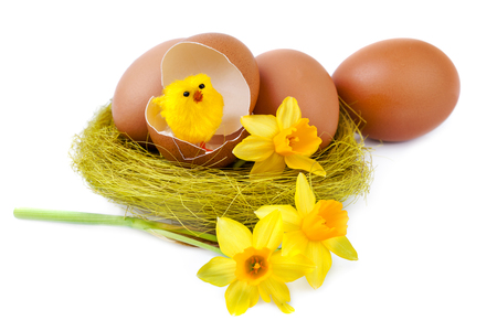 Easter Egg decoration with funny chick on white background
