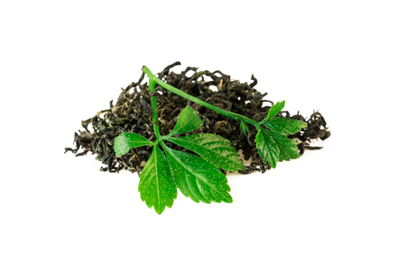 Chinese Jiaogulan Leaf Tea of Gynostemma Plant Isolaetd on White