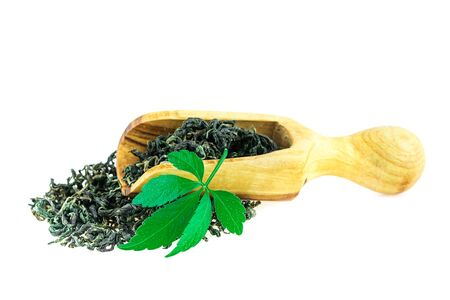 Jiaogulan Miracle Grass Leaf Chinese Herb Tea in Wooden Spoon On White Standard-Bild