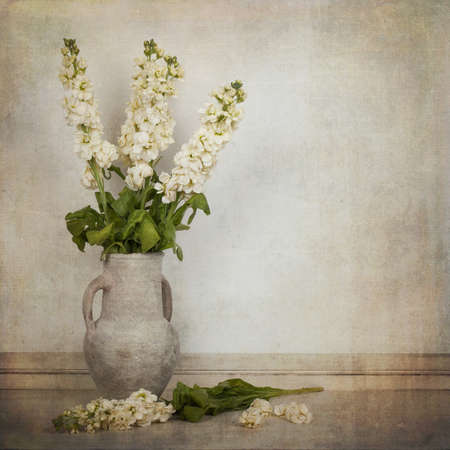 Cream white stock flowers in a cream vase in a vintage style. Space for text. Stok Fotoğraf