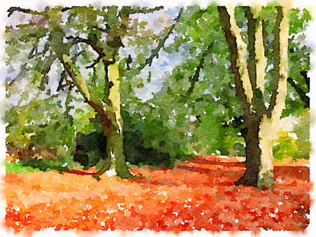 Digital watercolor painting of autumn leaves on the ground, under trees that still have some green leaves on them. With space for text. Imagens