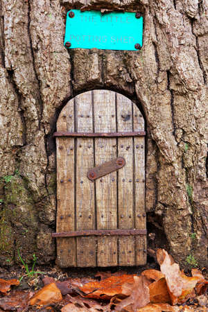 Fairy door in a tree trunk with autumn leaves on the ground in front of the entrance. With space for text. The little potting shed is closed, at lunch.