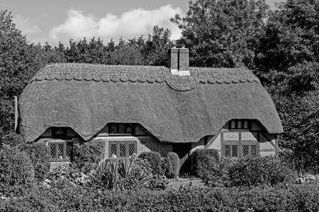 Lovely black and white picture postcard quintessentially English thatched cottage in the New Forest in the UK on a sunny day. Picture taken from a public place. Imagens