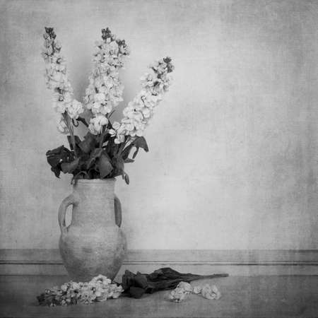 Black and white image of cream white stock flowers in a cream vase in a vintage style. Space for text. Imagens