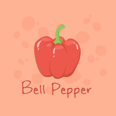 Red Bell Pepper Vegetable vector illustration isolated on red background.  イラスト・ベクター素材