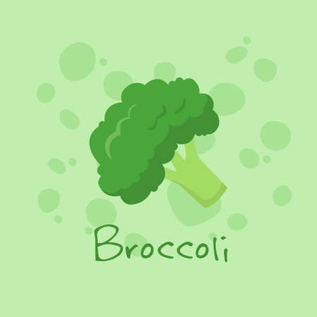 Vegetable Broccoli vector illustration isolated on green background.
