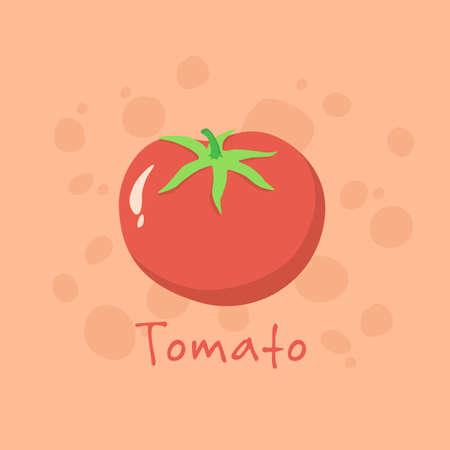Tomato Vegetable vector illustration