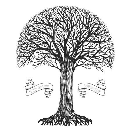 birretes: Silueta de un árbol con una corona esférica. Ilustración vectorial