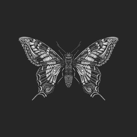 Amazing fly butterfly on black background. Vector. Creative concept for invitations  cards. Black and white