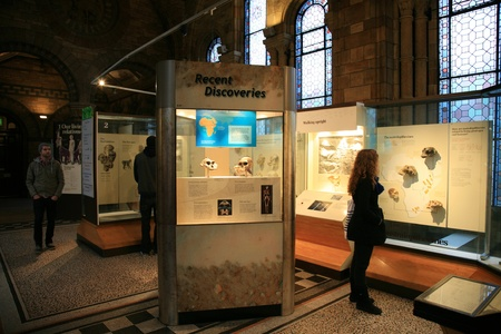 London, UK - January 07, 2011: Inside view of Natural History Museum. This Museum is one of the most favorite museum for children seeing Dinosaur display.