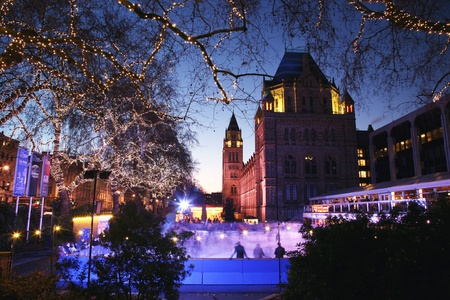 natural history museum: The Natural History Museum is one of the most favorite museum for tourist in London.