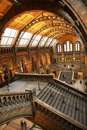 The Natural History Museum is one of the most favorite museum for tourist in London.