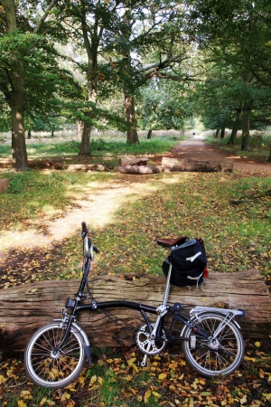 Bicycle in the Richmond Park, Autumn, London, UK