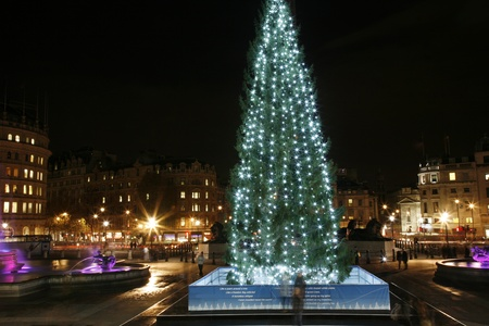 Trafalgar Square night view with christmas tree Stock Photo - 11691959