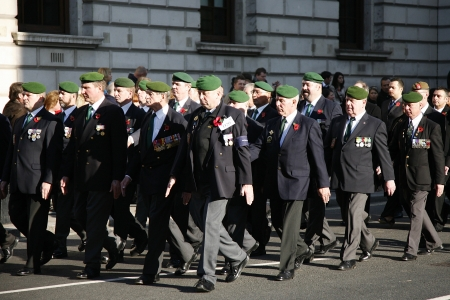 remembrance day poppy: London, UK - November 13, 2011:  People take part in Remembrance Day, Poppy Day or Armistice Day,  11 every Nov, observed by Commonwealth of Nations, to remember armed forces who have died since First World War, Parade.