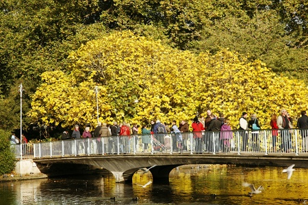 st jamess: London, UK - October 29, 2012: People enjoy autumn color on bright sunny day at St Jamess Park, bounded by Buckingham Palace, oldest royal parks in London,   Editorial