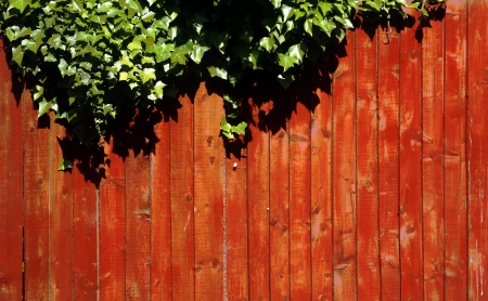 Close up wooden red fence panels with some green leaves   photo