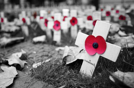 Poppy Cross, Remembrance day display in Westminster Abbey Stok Fotoğraf