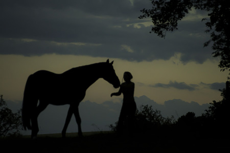 Silhouette of girl with horse Stock Photo