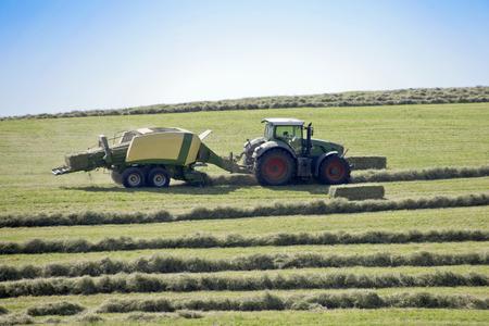 Harvesting hay tractor work on field make haystacks