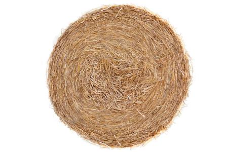 Bala de paja en campo de maíz aislado Foto de archivo - 82513220