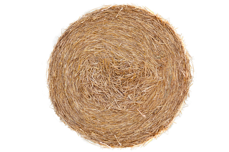Straw bale on cornfield isolated