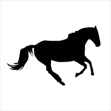 Horse gallop vector Ilustrace