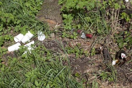 Trash and mess in meadow and forest. glass and paper thrown away in nature