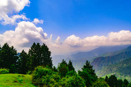 View enroute to Prashar Lake trekk trail. It is located at a height of 2730 m above sea level surrounded by lesser himalayas peaks of Shivalik & Pir panjal near Mandi, Himachal Pradesh, India.