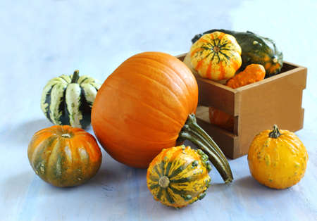 Autumn pumpkins on wooden table  photo