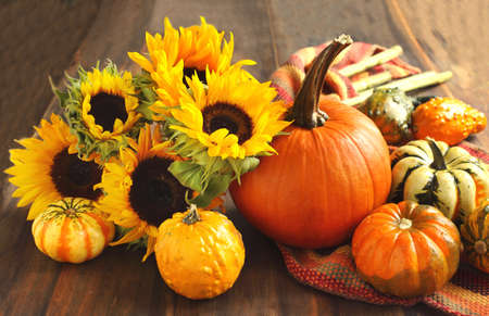 Autumn pumpkins and sunflowers