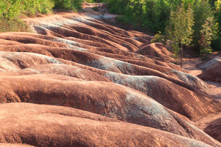 badlands: Close-up of rolling hills of Cheltenham Badlands