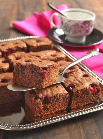 Delicious Chocolate Brownies  with cranberry Stock Photo