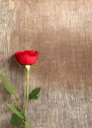木製の背景に単一の赤いバラ