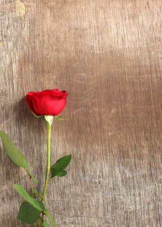 Single red rose on wooden background  Imagens