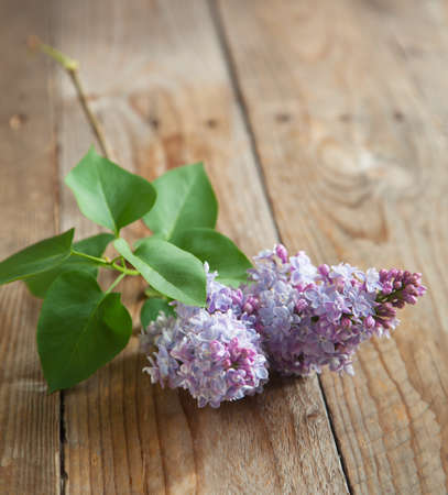 table surface: Lilac branch on wooden table  Selective focus