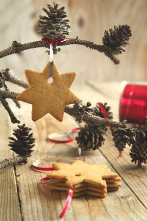 decoration: Gingerbread cookie hanging on branch with pine cones Stock Photo