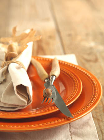 acorn: Autumn Table setting Stock Photo