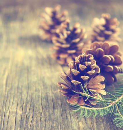 decoration: Pine cones on wooden background