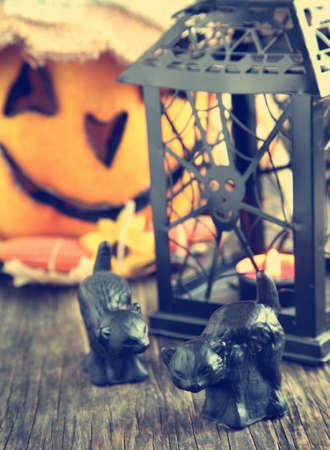 Halloween decoration photo