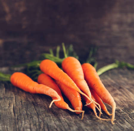 close up food: Fresh Carrots