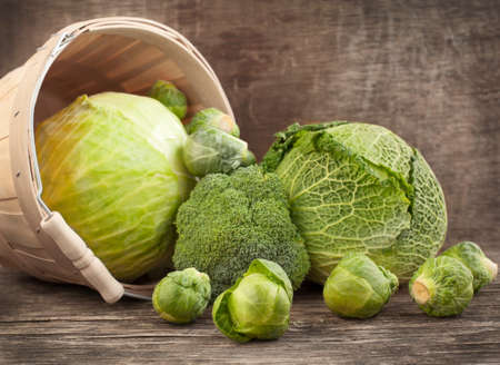 savoy cabbage: Still life with assortment cabbages on wooden background