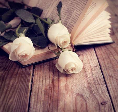 Rosen auf einem Buch in einem Vintage-Stil getönten Bild Standard-Bild - 28255466