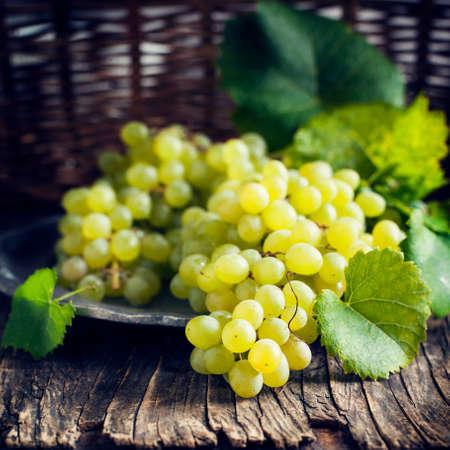 Grapes. Toned image photo